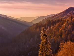 There are stunning mountain views in every direction near Gatlinburg!